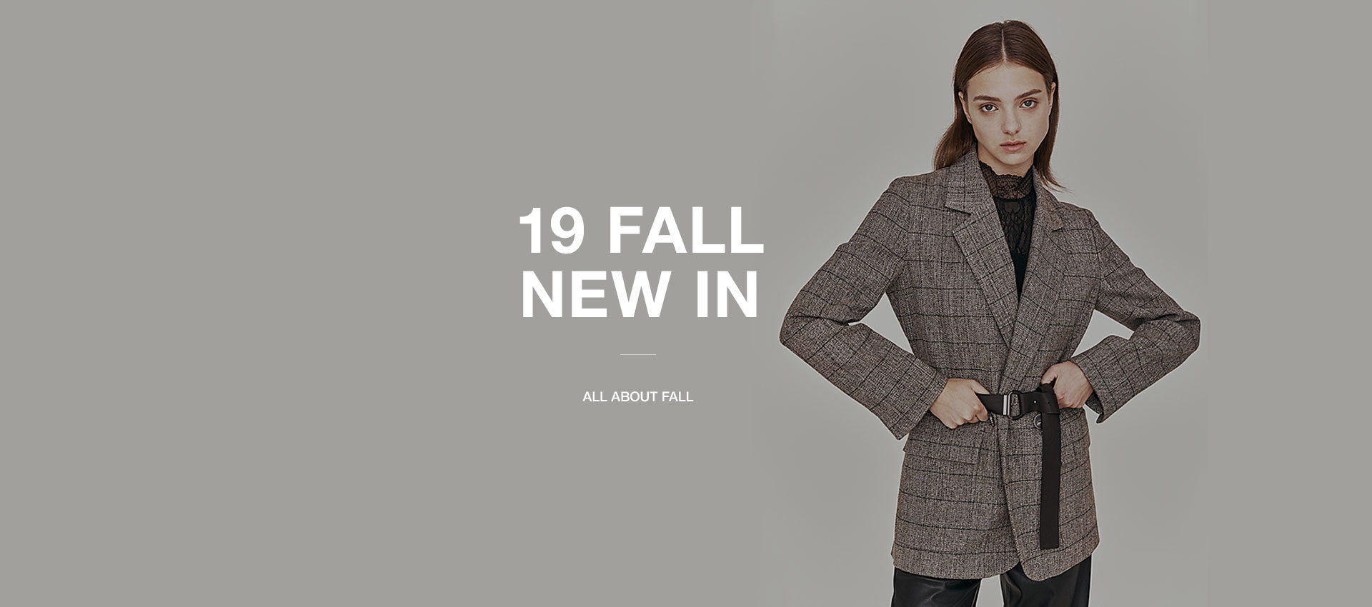 19 FALL NEW IN