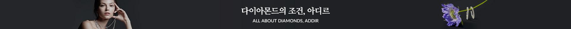 방송중_ 다이아몬드의 조건, 아디르