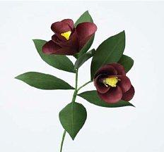 [Paper Eden] Camellia (동백) 페이퍼 플라워