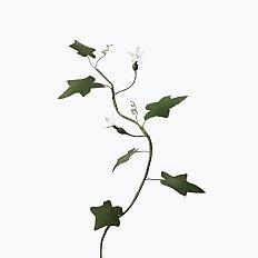 [Paper Eden] Melothria (새박) 페이퍼 플라워