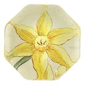 [John Derian] Yellow Narcissus 8각형 유리 문진