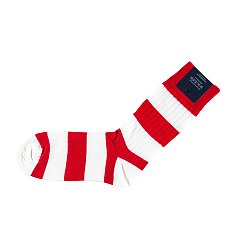 Stripe Socks 코기 스트라이프 삭스