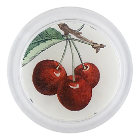 [John Derian] Cherries 코스터 (4 inch)