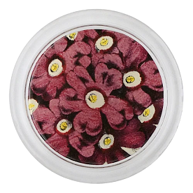 [John Derian] Mauve Primula 코스터 (4 inch)