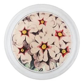 [John Derian] Pink Primula 코스터 (4 inch)