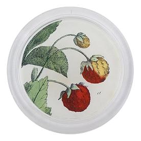 [John Derian] Strawberries 코스터 (4 inch)