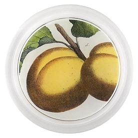 [John Derian] Apricot 코스터 (6 inch)