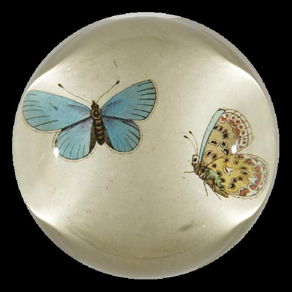 [John Derian] Blue Butterflies 돔 유리 문진